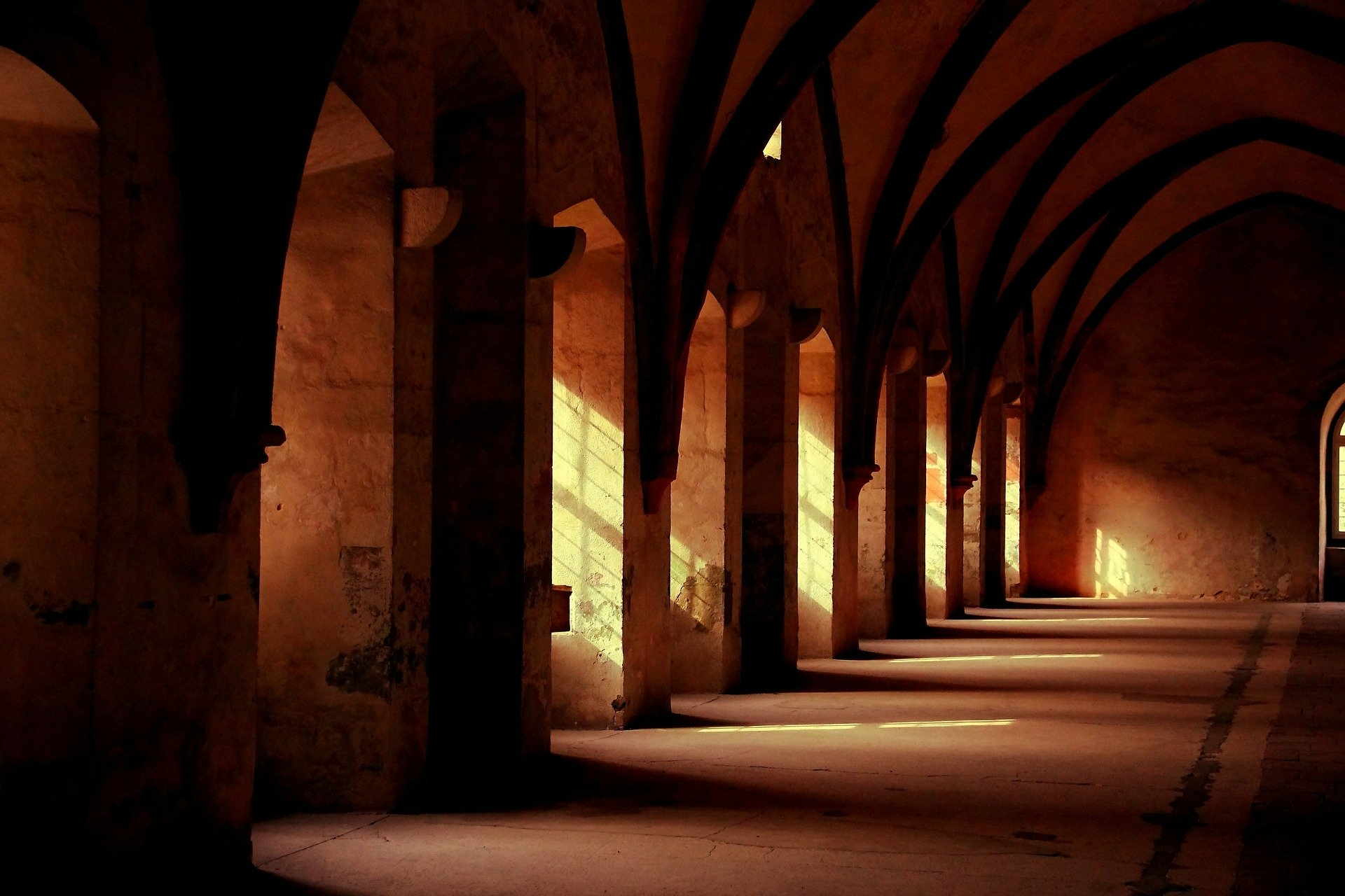 Giant Centipedes and Hallowed Halls